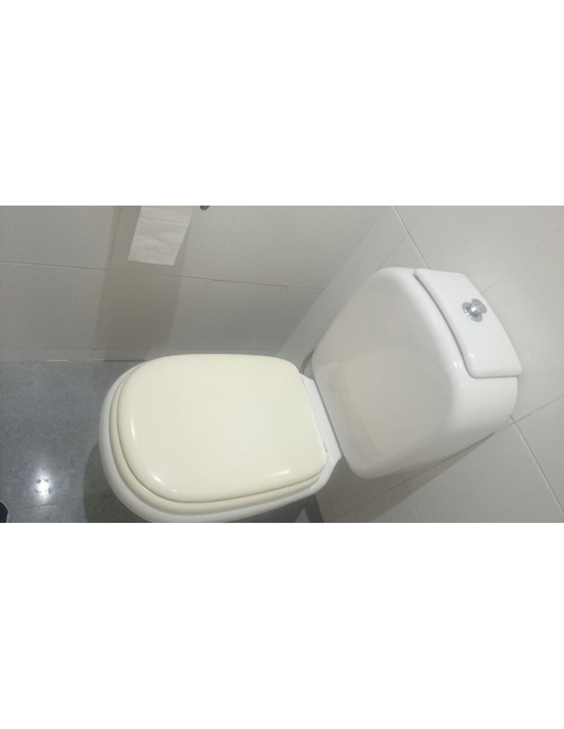 Sedile Water Ideal Standard Tesi.Seat Wc Ideal Standard Tesi Adaptable In Resiwood
